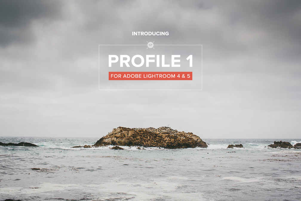 Introducing Profile 1
