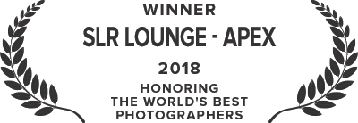SLR Lounge - Apex Award - 2018