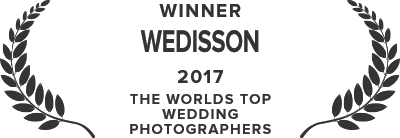 Wedisson Award - 2017